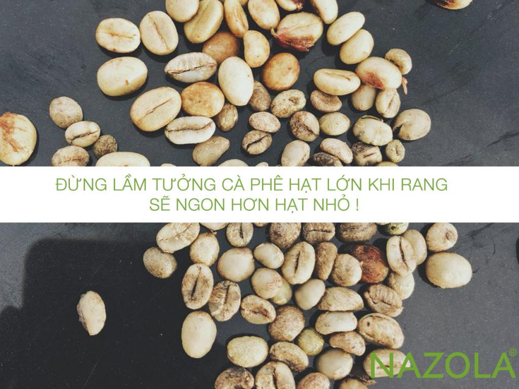Đừng lầm tưởng cà phê hạt lớn khi rang sẽ ngon hơn hạt nhỏ !