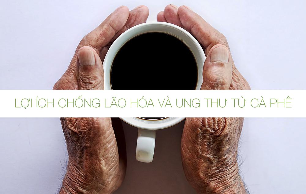 Lợi ích chống lão hóa và ung thư từ cà phê